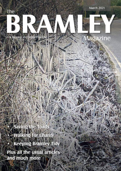 The Bramley Magazine - March 2021